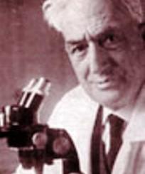 Alberto Razzauti al microscopio